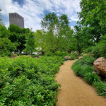 Myriad Gardens Monthly Walking Tour