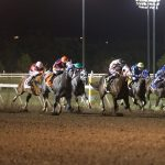 Quarter Horse Season Opener and Family Fun Weekend
