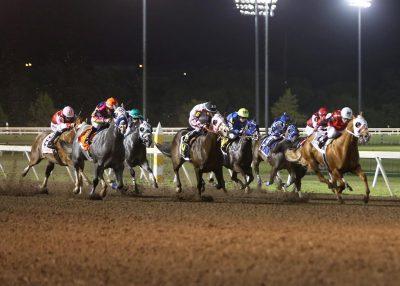 Quarter Horse Season Opener and Family Fun Weekend...