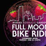 Full Moon Bike Ride