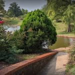 Digital Photography in the Park