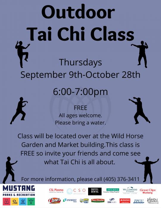Outdoor Tai Chi Class